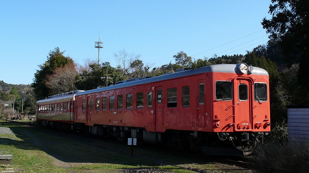 P1100262 (2)