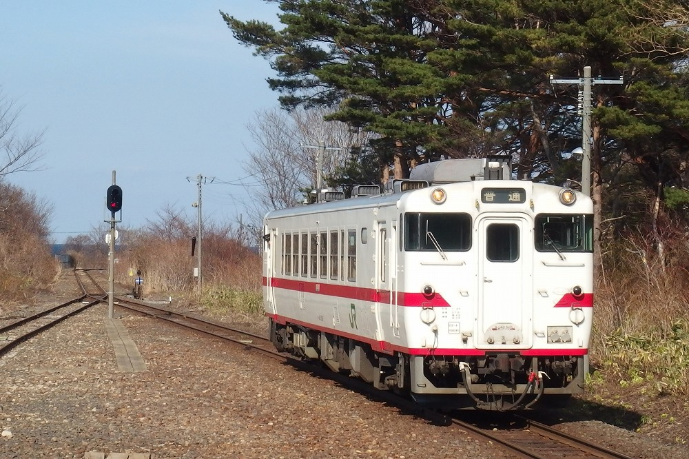 P4091172 (2)