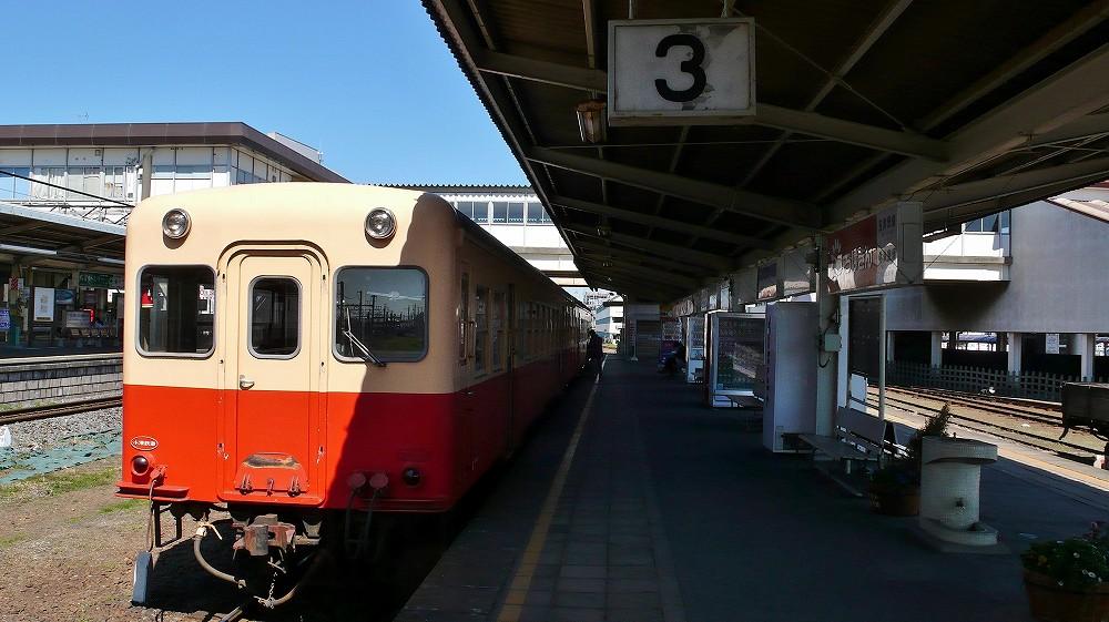 P1100176.jpg