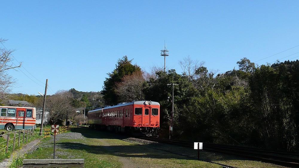 P1100260.jpg