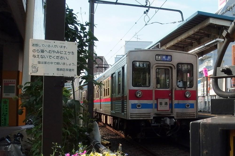 P6010005.jpg