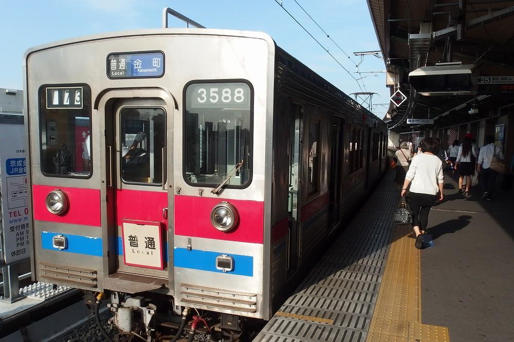 P6010008.jpg
