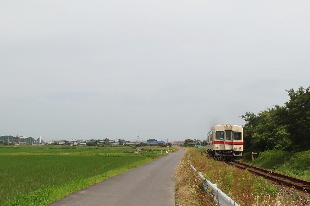 P6130094.jpg