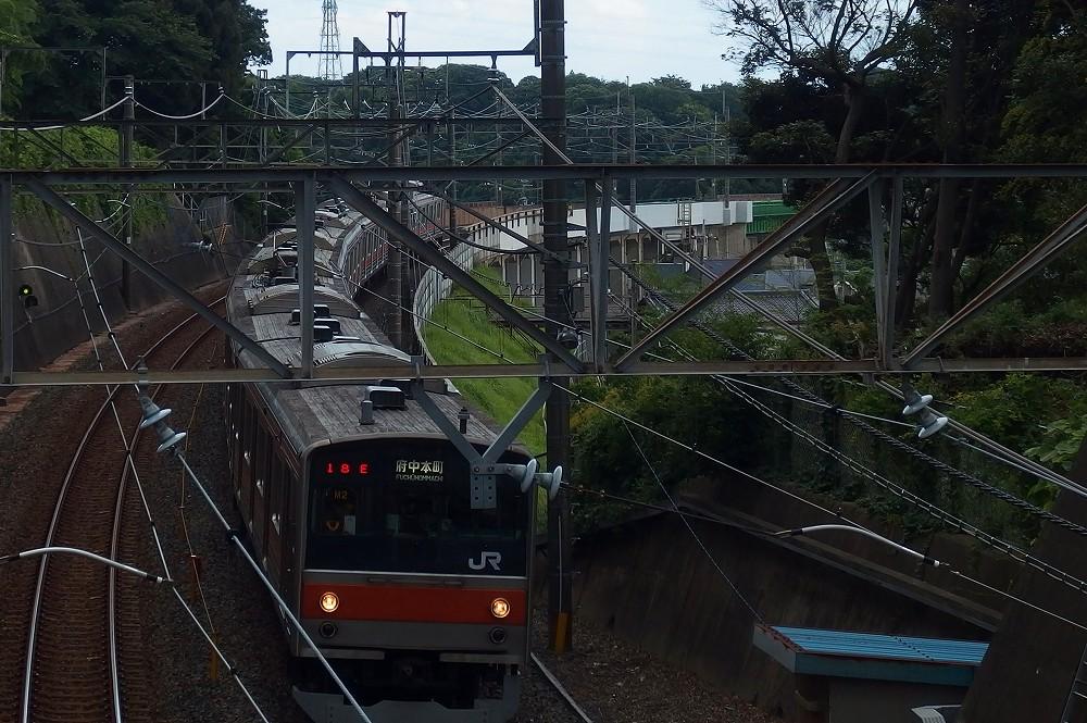 P7050031.jpg